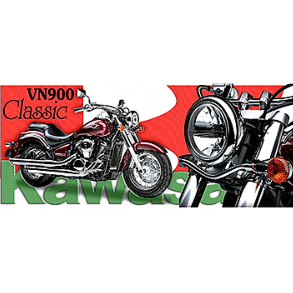 Мотокружка Kawasaki VN900