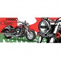 04-004, Мотокружка Kawasaki VN900