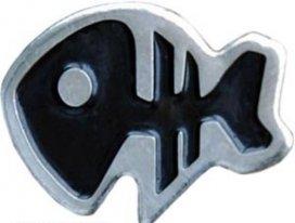 pm0054, Скелет рыбки.