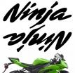 "decals_ninja_1_silver, Комплект наклеек ""kawasaki ninja ver. 1"" silver"